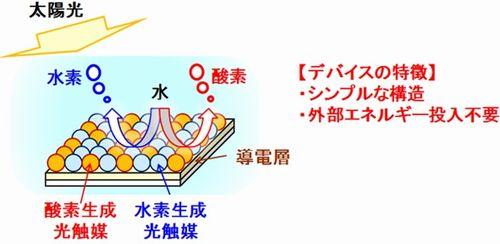 nedo_hikari1_sj.jpg