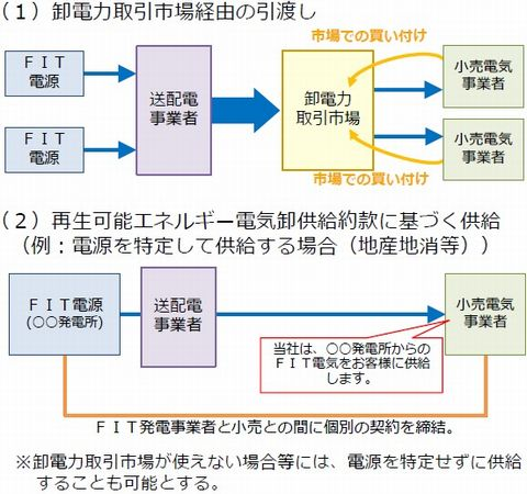 saiene_kaisei12_sj.jpg