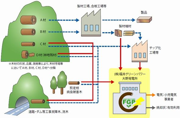 ohno_biomas4_sj.jpg