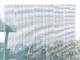貼るだけで窓が年間1400kWh発電、横浜のビール工場で導入