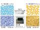レアメタル不要の水素製造装置を実現、多孔質グラフェンの量産近づく