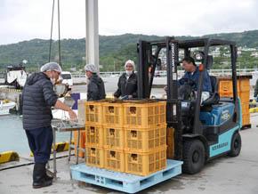 沖縄漁師の経験と勘を未来へつなぐIoT環境モニタリング