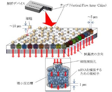 開発したデバイスとチップの構成
