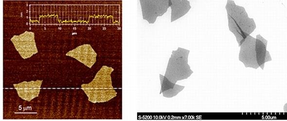 左は酸化グラフェンの原子間力顕微鏡画像、右は同じく走査型電子顕微鏡画像 出典:NEDO