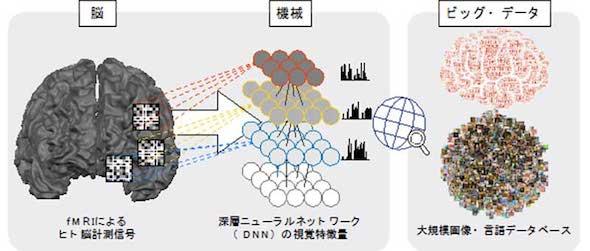 脳−機械融合知能の概念図(クリックして拡大) 出典:京都大学